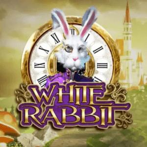 White Rabbit  logo arvostelusi