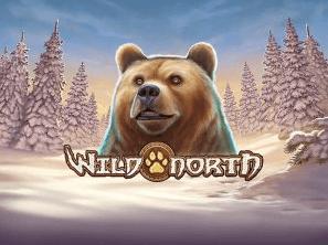 Wild North  logo arvostelusi