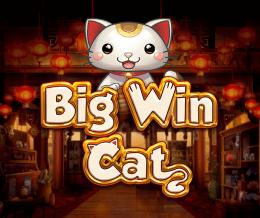 Big Win Cat  logo arvostelusi