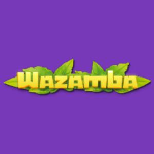 Wazamba side logo Arvostelu
